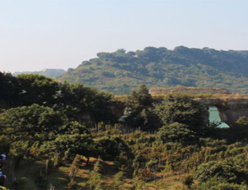 A lake, a vineyard and Campania taste